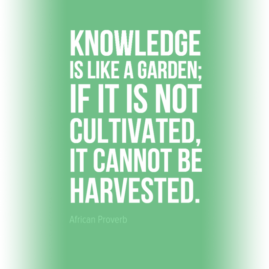 Knowledge_Quote_Alpha